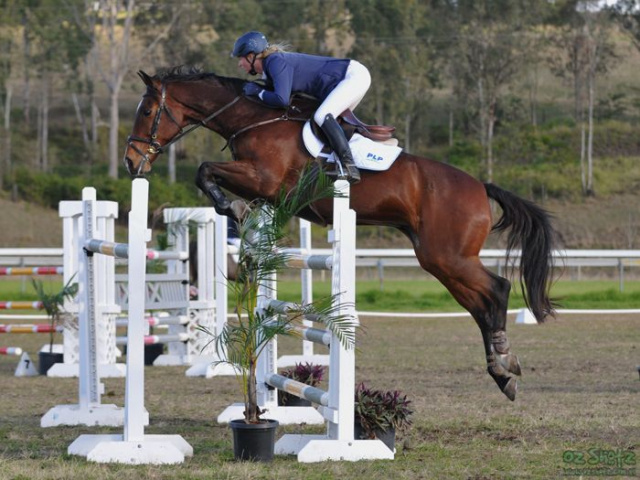 Horse Training Properties For Sale Qld